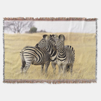 Grooming zebras throw blanket