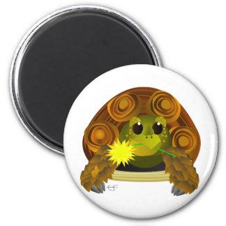 Groovy Tortoise Magnet