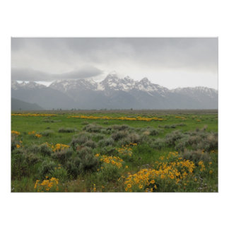 Gros Ventre View Of Tetons Poster