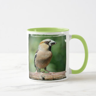 GROSBEAK - Photography Jean Louis Glineur Mug