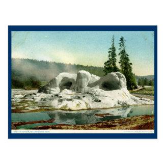 Grotto Geyser, Yellowstone Park Vintage Postcard