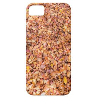 Ground covered with beech tree leaves in autumn case for the iPhone 5