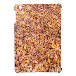 Ground covered with beech tree leaves in autumn iPad mini case