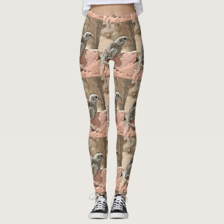 Ground Squirrel in Cartoon Women's Leggings. Leggings