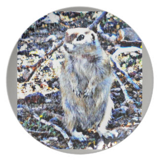 Ground Squirrel in the Rain Melamine Plate