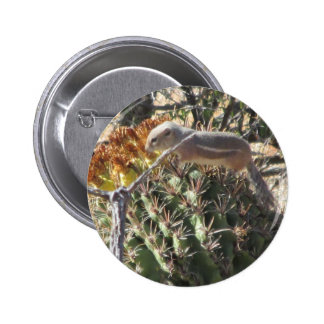 Ground Squirrel on Barrel Cactus Pinback Buttons