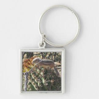 Ground Squirrel on Barrel Cactus Keychain