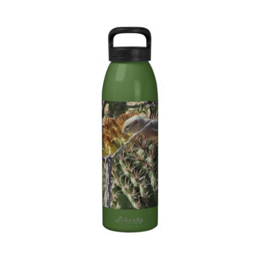 Ground Squirrel on Barrel Cactus Water Bottle