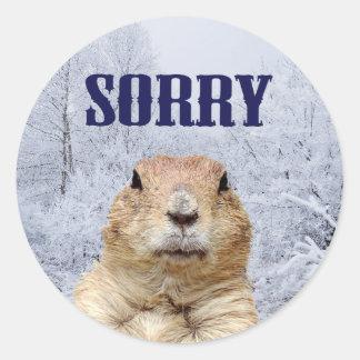 Groundhog Day Sorry Classic Round Sticker
