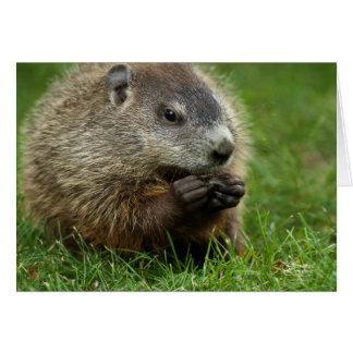 Groundhog Day Woody Card