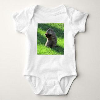 Groundhog eating baby bodysuit