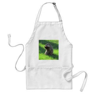 Groundhog eating standard apron
