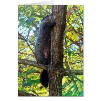 Groundhog I Miss You Greeting Card