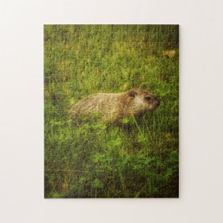 Groundhog in a field puzzle