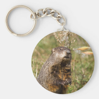 Groundhog Key Ring
