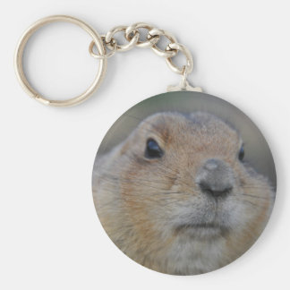 groundhog key ring