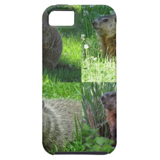 Groundhog Medley Case For The iPhone 5
