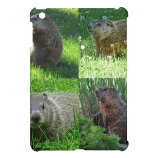 Groundhog Medley Cover For The iPad Mini