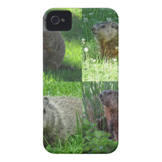 Groundhog Medley iPhone 4 Case-Mate Case