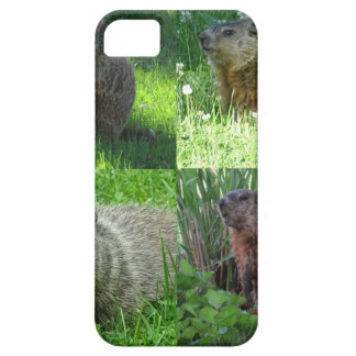 Groundhog Medley iPhone 5 Case