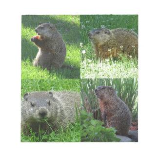 Groundhog Medley Notepad