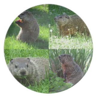 Groundhog Medley Plate