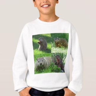Groundhog Medley Sweatshirt