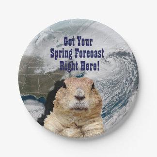 Groundhog Spring Forecast Paper Plate