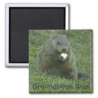 Groundhogs Rule - Groundhog Day Magnet