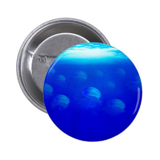 Group blue jellyfish in the Atlantic ocean swiming 6 Cm Round Badge