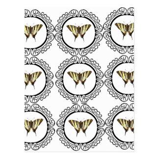 group of butterflies postcard