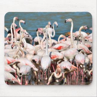 Group of flamingos mousepads