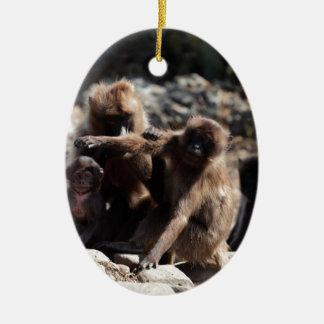 Group of gelada baboons (Theropithecus gelada) Ceramic Ornament