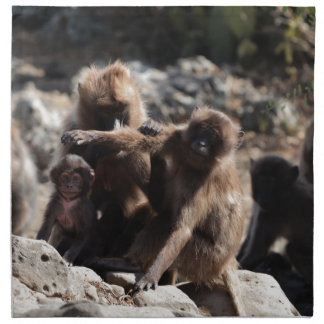Group of gelada baboons (Theropithecus gelada) Napkin
