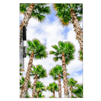Group of high straight palm trees dry erase board