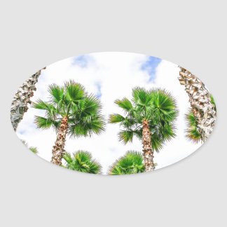 Group of high straight palm trees oval sticker