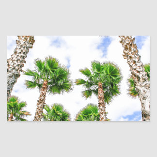 Group of high straight palm trees rectangular sticker