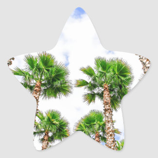 Group of high straight palm trees star sticker