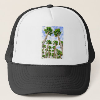 Group of high straight palm trees trucker hat