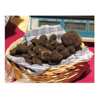 Group of italian expensive black truffles postcard