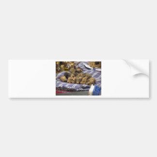 Group of italian expensive white truffles bumper sticker