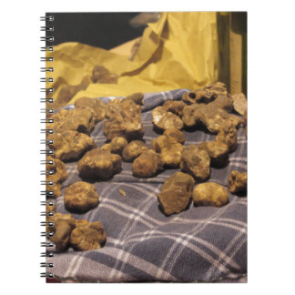 Group of italian expensive white truffles notebook