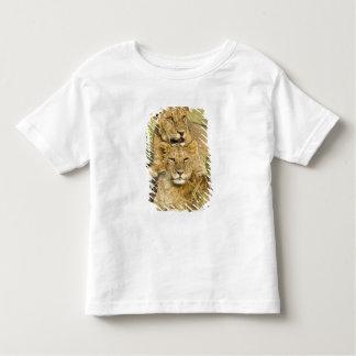 Group of lion cubs, Panthera leo, Masai Mara, T Shirts