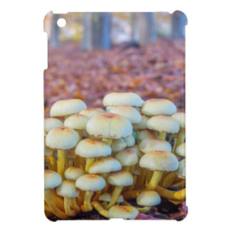 Group of mushrooms in fall beech forest iPad mini cover