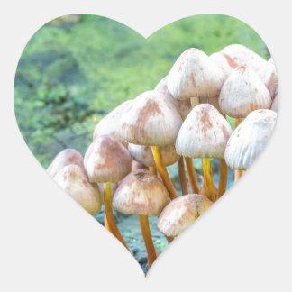 Group of mushrooms on green tree stump heart sticker