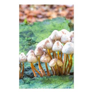 Group of mushrooms on green tree stump stationery design