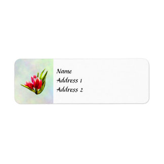 Group of Red Tulips Return Address Label