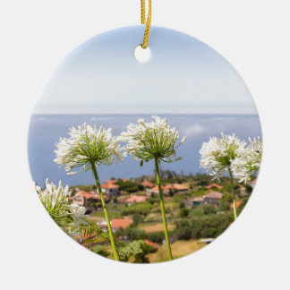 Group of white agapanthus near village and sea ceramic ornament