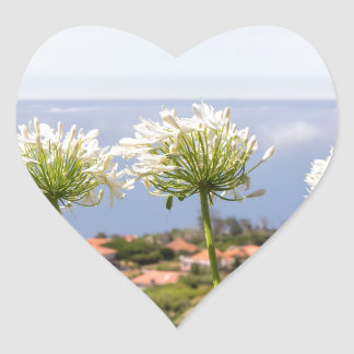 Group of white agapanthus near village and sea heart sticker