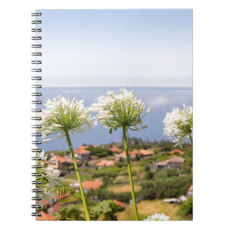 Group of white agapanthus near village and sea notebook